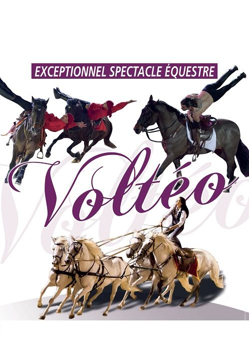 SPECTACLE EQUESTRE VOLTEO